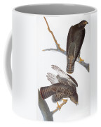 Audubon: Red-tailed Hawk Coffee Mug
