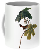 Audubon: Sparrow, 1827-38 Coffee Mug