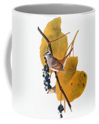 Audubon: Sparrow Coffee Mug