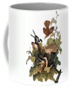 Audubon: Thrasher Coffee Mug