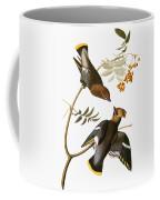 Audubon: Waxwing Coffee Mug