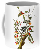 Audubon: Woodpecker, 1827 Coffee Mug