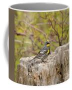 Audubon's Yellow Rumped Warbler Coffee Mug