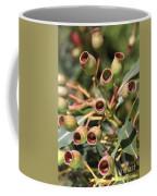 Australia Ingumnuts Coffee Mug