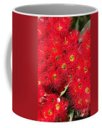 Australian Native Eucalyptus Flowers Coffee Mug