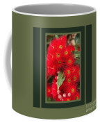 Australian Red Eucalyptus Flowers With Design Coffee Mug