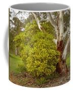 Australian Wattles Bush And Candlebark Gum Tree Coffee Mug
