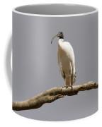 Australian White Ibis Perched Coffee Mug