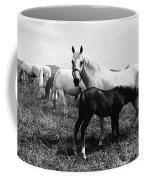 Austria: Horse Farm Coffee Mug