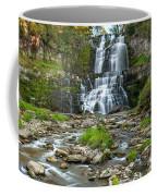 Autumn At Chittenango Falls Coffee Mug