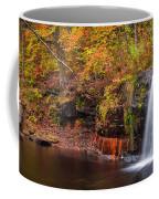 Autumn At Wolf Creek Falls Coffee Mug