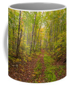 Autumn Birch Woods Coffee Mug