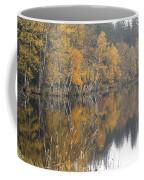Autumn Birches On The Shore Of Lake Coffee Mug