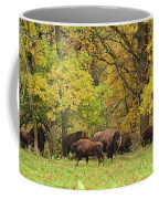 Autumn Bison Coffee Mug