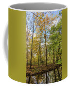 Autumn Color Reflections Coffee Mug