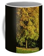 Autumn Colors 8 Coffee Mug