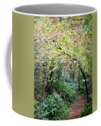 Autumn Colors In The Forest Coffee Mug