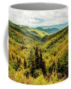 Autumn Colors In The Smokies Coffee Mug