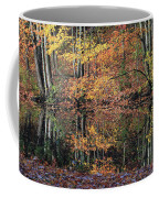 Autumn Colors Reflect Coffee Mug