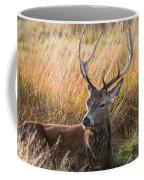 Autumn Deer Coffee Mug