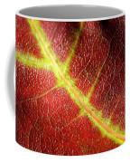 Autumn Fall Colours 7 Coffee Mug