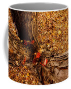 Autumn Fall  Dream Coffee Mug