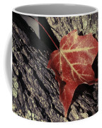 Autumn Find Coffee Mug
