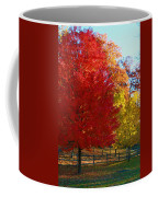 Autumn Fire  In  Red  And  Gold Coffee Mug