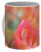 Autumn Fires Coffee Mug