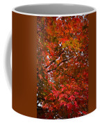 Autumn Foliage-1 Coffee Mug