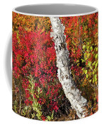 Autumn Foliage In Finland Coffee Mug
