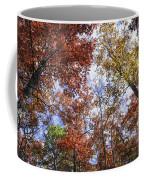Autumn Forest Canopy Coffee Mug