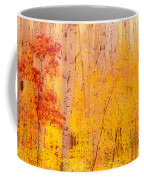 Autumn Forest Wbirch Trees Canada Coffee Mug