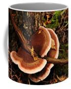 Autumn Fungi Coffee Mug