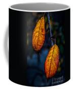 Autumn Gradation Coffee Mug