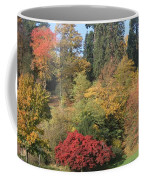 Autumn In Baden Baden Coffee Mug