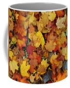 Autumn In Canada Coffee Mug
