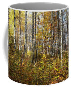 Autumn In The Birches Forest Coffee Mug