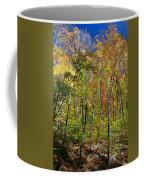 Autumn In Schooley's Mountain Park 2 Coffee Mug