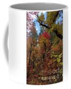 Autumn In Sedona Coffee Mug
