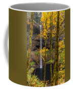 Autumn In Silver Falls Coffee Mug