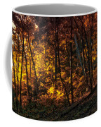 Autumn In The Woods Coffee Mug