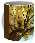 Autumn Is My Favourite Colour Coffee Mug