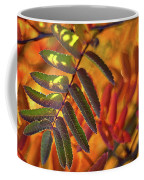 Autumn Leaves - Patagonia Coffee Mug
