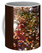 Autumn Leaves Reflections Coffee Mug