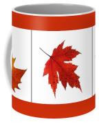 Autumn Leaves Triptych Coffee Mug