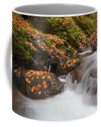 Autumn Litter Coffee Mug