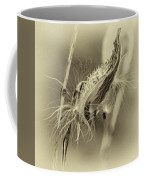 Autumn Milkweed 7 - Sepia Coffee Mug