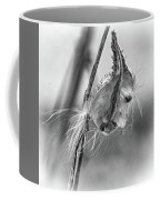 Autumn Milkweed 9 - Bw Coffee Mug