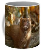 Autumn Mink Coffee Mug